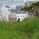 徳島城天守台